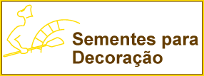 SementesDecoracao